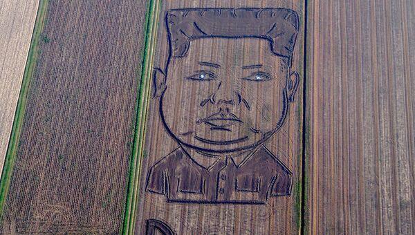 Итальянский художник Дарио Гамбарин на тракторе изобразил на поле под итальянской Вероной двухсотметровый портрет северокорейского лидера Ким Чен Ына с надписью Опасность на английском языке
