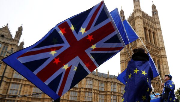 Участники протеста против Brexit возле здания парламента в Лондоне. 14 ноября 2017
