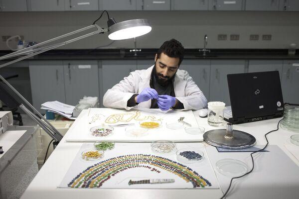 Реставрация ожерелья Тутанхамона в мастерской реставрации Великого Египетского музея в Гизе
