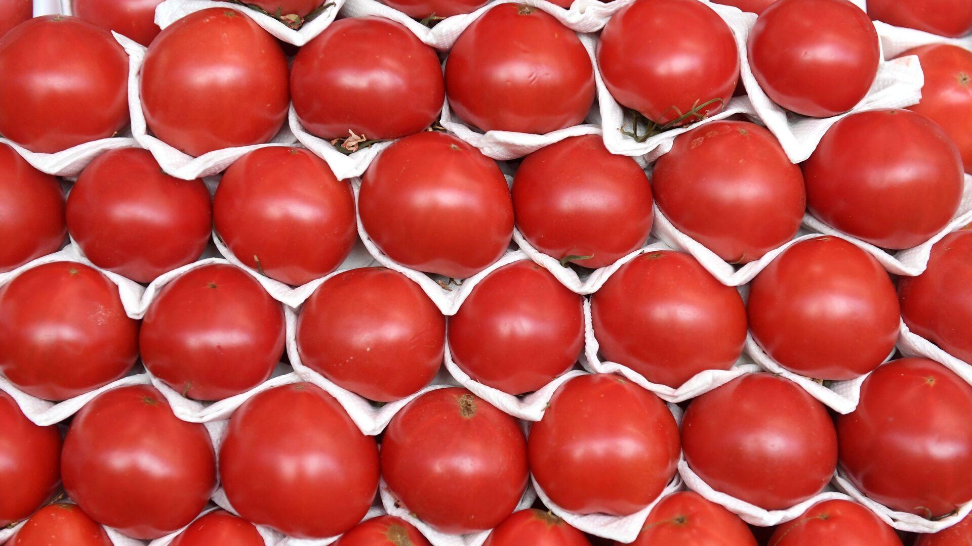 Прилавок с помидорами на Дорогомиловском рынке в Москве - РИА Новости, 1920, 18.12.2020