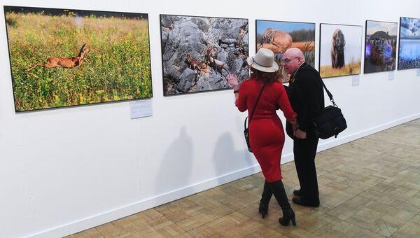 Экспозиция V общероссийского фестиваля природы Первозданная Россия в Центральном доме художника в Москве