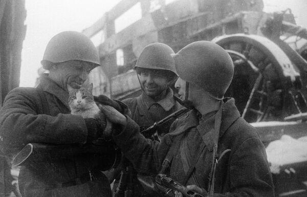 Мирные воспоминания. Сталинград, 1943 г