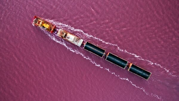 Состав вывозит соль, добытую в Бурлинском озере