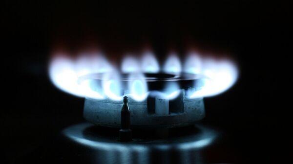Пламя газовой конфорки. Архивное фото