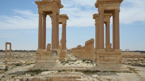 1515953188 0:151:3174:1936 600x0 80 0 0 697b0434f78c7bb723f912239ce88941 - Севастополь направит вторую археологическую экспедицию в Сирию