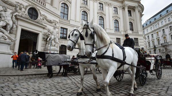 Конный экипаж на улице Вены