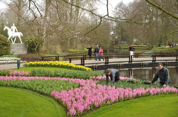 Парк цветов Кекенхоф в Нидерландах
