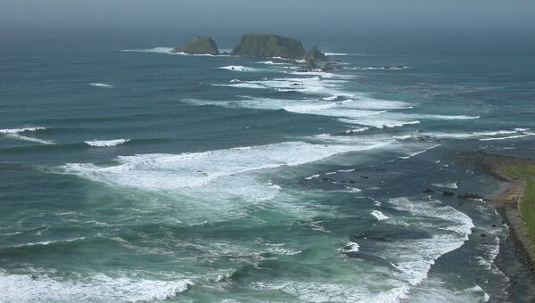 Природа Курильских островов. Архивное фото