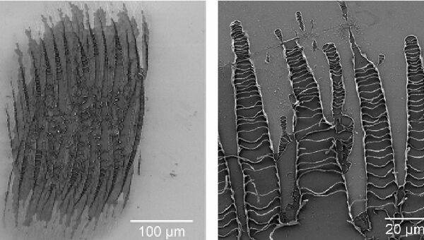 Результат действия мощного терагерцового излучения на тонкую металлическую пластину