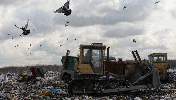 Бульдозер на полигоне твердых бытовых отходов