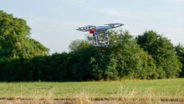 Квадрокоптер над полем. Архивное фото