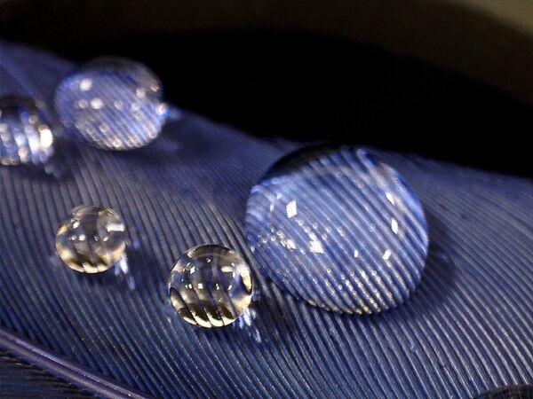 Капли воды под увеличением стереомикроскопа