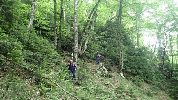 Спасатели ведут поиск пропавшего в горно-лесной местности 13-летнего подростка. 13 июля 2018