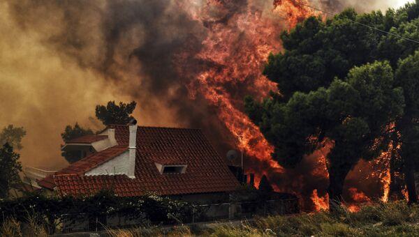 Пожар в Греции. Архивное фото