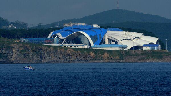 Приморский океанариум на острове Русский во Владивостоке