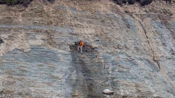 Илья Бобровский извлекает окаменелость из куска горной породы