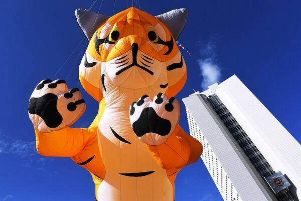 Воздушная фигура тигра во время праздничных мероприятий, посвященных Дню тигра, во Владивостоке