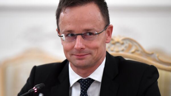 Глава МИД Венгрии Петер Сийярто во время встречи с МИД РФ Сергеем Лавровым. 3 октября 2018