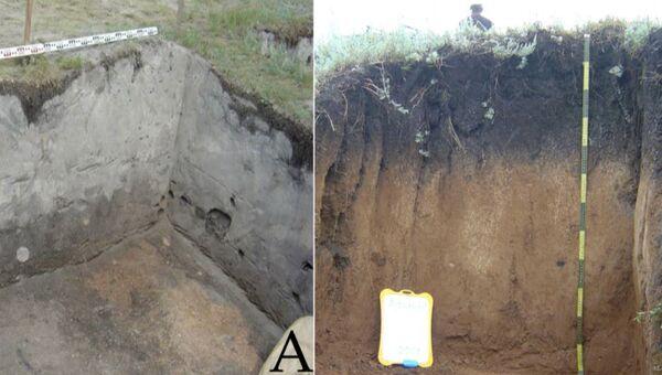 Мощный слой из гипса на месте поселения бронзового века в Башкирии