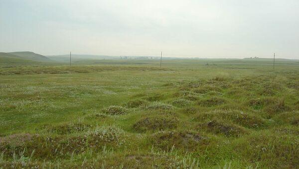 Гипсовая пустыня поселения Мурадымово. Люди пытались здесь жить 3,5 тысячи лет назад