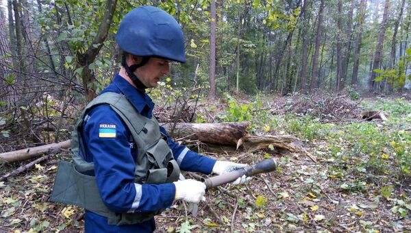 Обнаружение боеприпасов в районе горящего арсенала в Черниговской области. Архивное фото