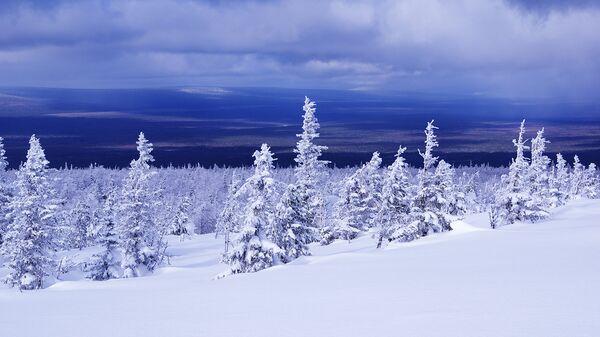 По заповедным землям: куда можно поехать зимой