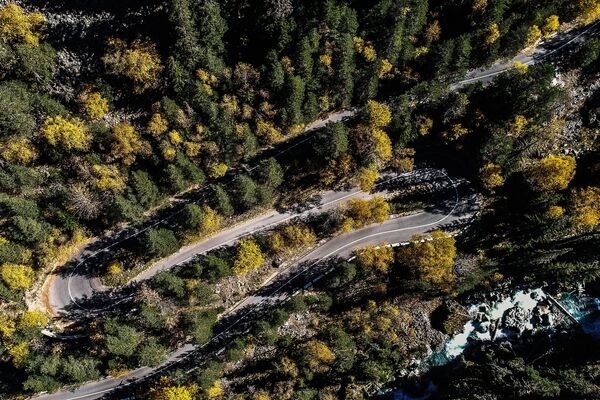 Дорога в Тебердинском государственном природном биосферном заповеднике в Карачаево-Черкесской Республике