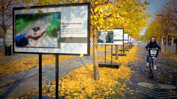 Девушка едет на велосипеде по Крымской набережной в парке искусств Музеон в Москве