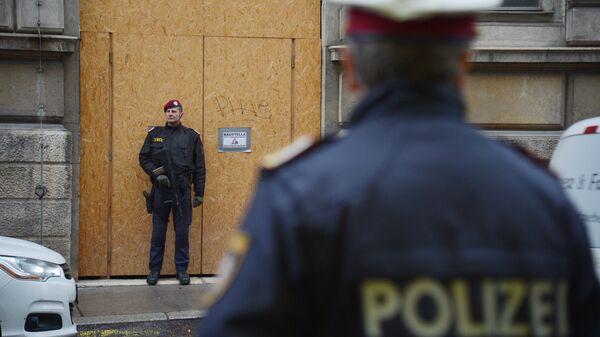 Австрийские полицейские. Архивное фото