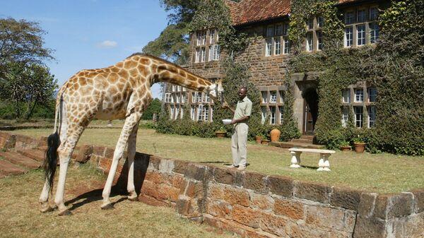 Отель Giraffe Manor в Кении