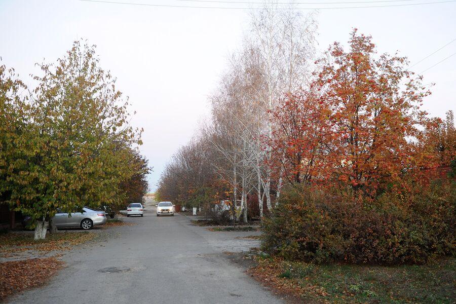Улица Зеленая, где находится частный дом, в котором 5 ноября 2010 года было совершено массовое убийство, в станице Кущевская Краснодарского края