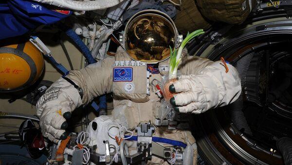 Лук на борту МКС. 2014 год