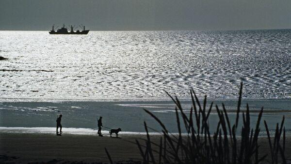 Пограничники РФ открыли огонь, чтобы задержать судно в Тихом океане
