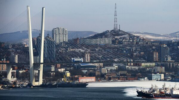 Песков подтвердил соглашение В. Путина перенести столицу ДФО воВладивосток