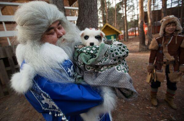 Ямал Ири из Салехарда несет щенка в подарок Деду Морозу во время празднования Дня рождения Деда Мороза в Великом Устюге