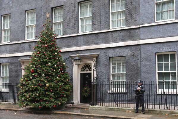 Рождественская елка на Даунинг-стрит в Лондоне