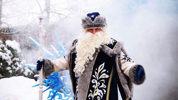 Дед Мороз на территории своей резиденции в селе Нелжа