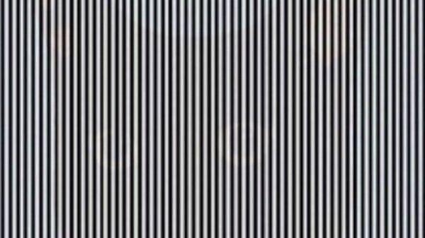 Фото с эффектом оптической иллюзии