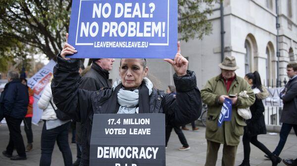 Участница акции против Brexit у здания парламента Великобритании в Лондоне. 15 января 2019