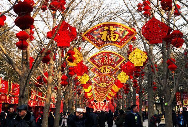 Во время празднования года Земляной свиньи в Китае