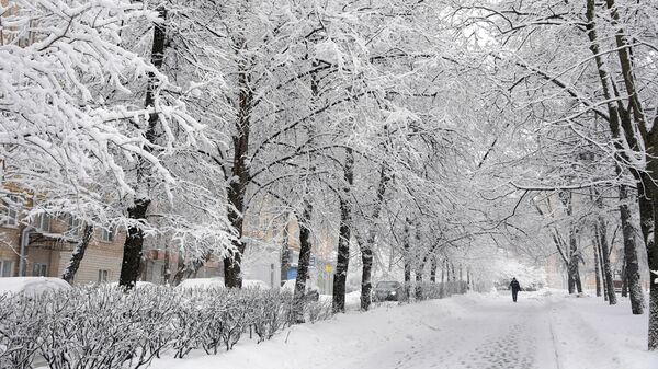 Прохожие на заснеженной улице Крупской в Москве