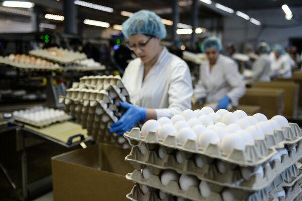 Сотрудница на участке сортировки и упаковки яиц на птицефабрике Ново-Барышевская в Новосибирской области