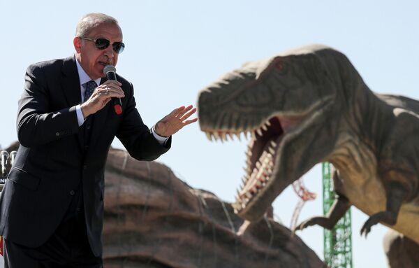 Президент Турции Реджеп Тайип Эрдоган выступает на церемонии открытия тематического парка Wonderland Eurasia в Анкаре