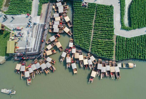 Лодки рядом с полями в Синхуа, в китайской провинции Цзянсу