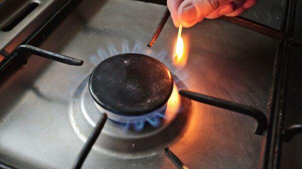 Конфорка газовой плиты
