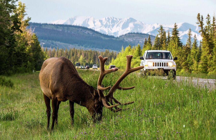 Канада, национальный парк Banff