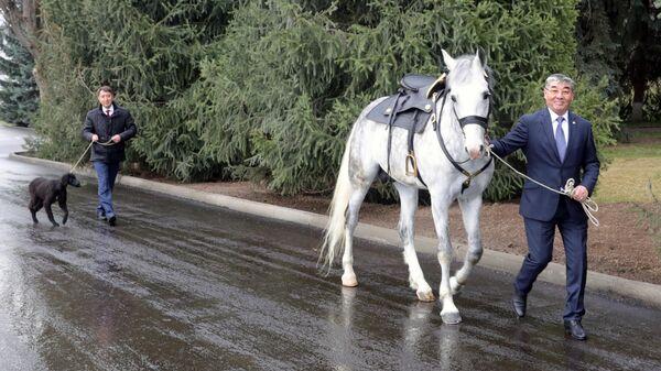 Президент Киргизии подарил Путину коня и щенка