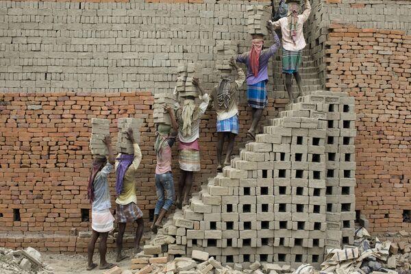 Рабочие несут глиняные кирпичи в печь для обжига в Фаракке, Индия