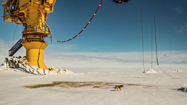 Нефтеналивной терминал Ворота Арктики