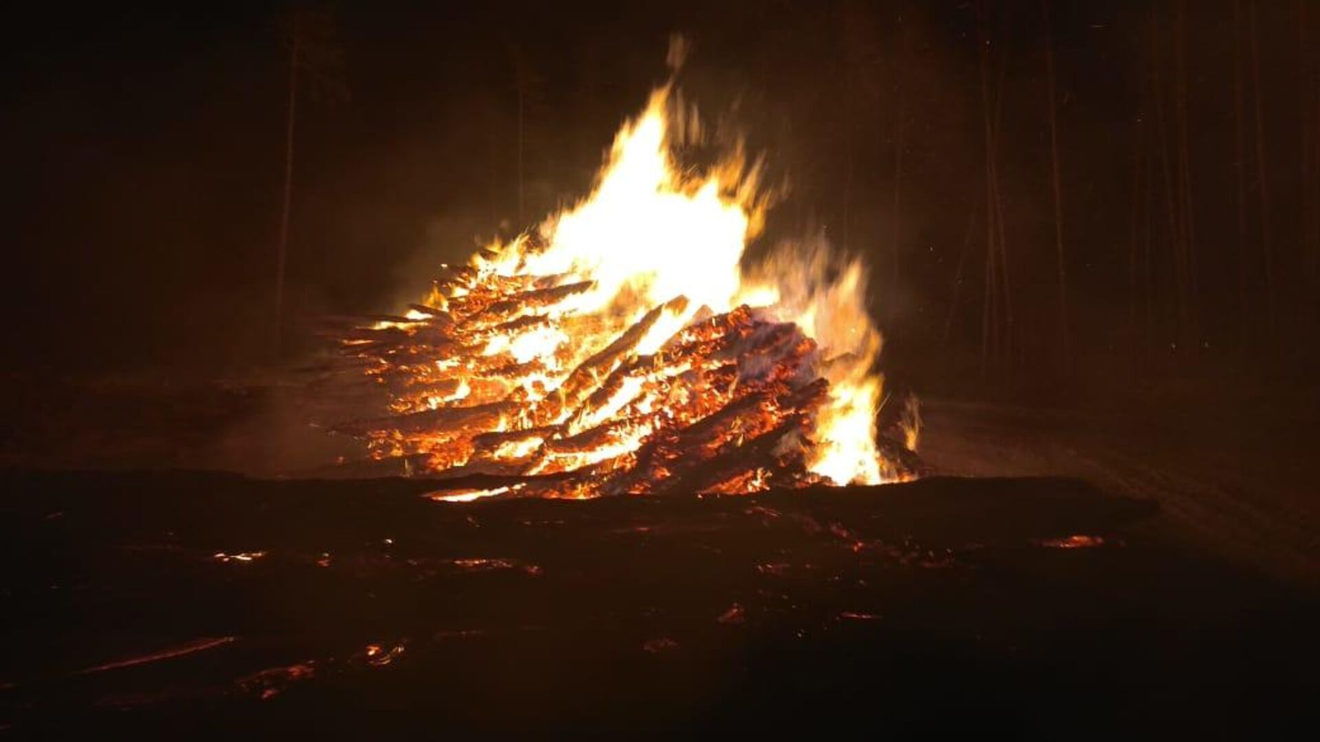 """""""Лосиный остров"""" признали не готовым к периоду лесных пожаров"""